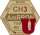 AmRRON University